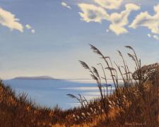 Small preview of From the path to the trees, Ringstead Bay