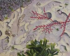 Small preview of Rockpools (triptych)2